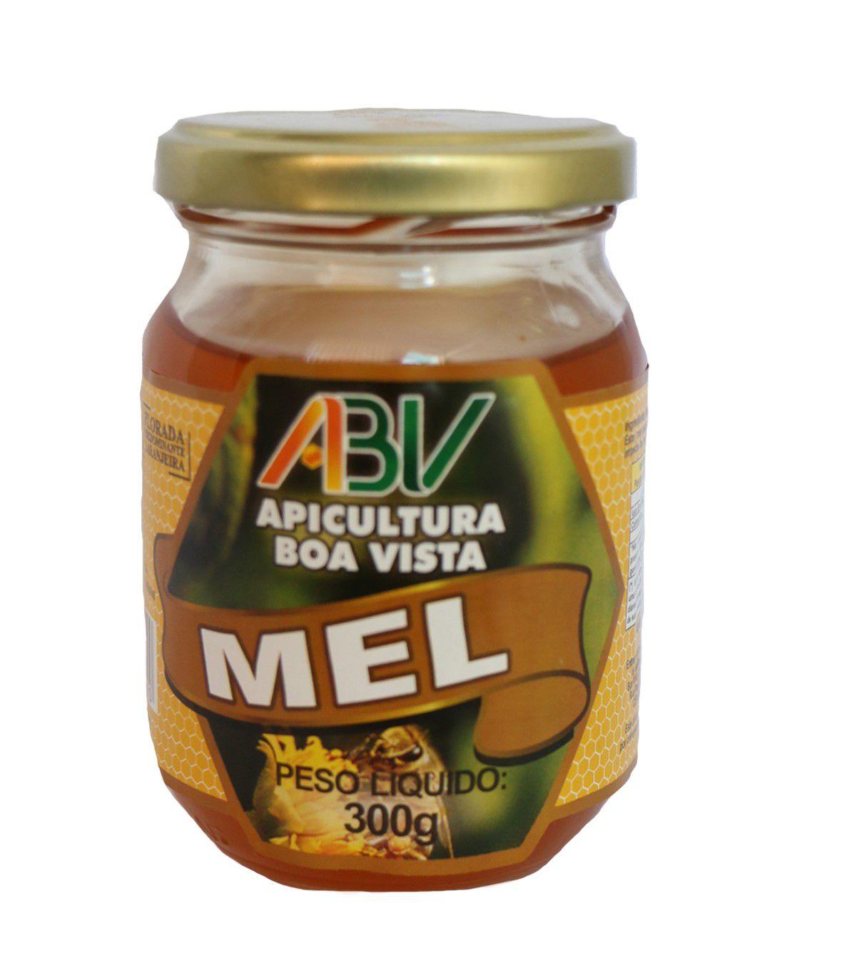 Mel puro eucalipto pote vidro 300g