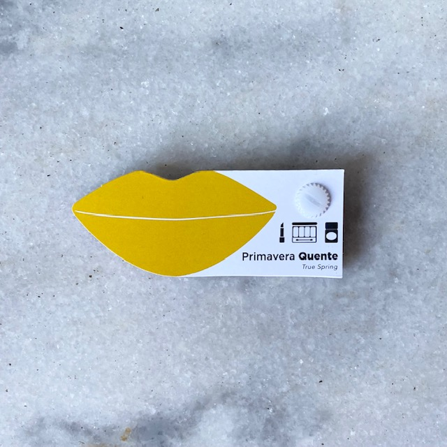 Cartela Batom + Make + Cabelo - Primavera Quente