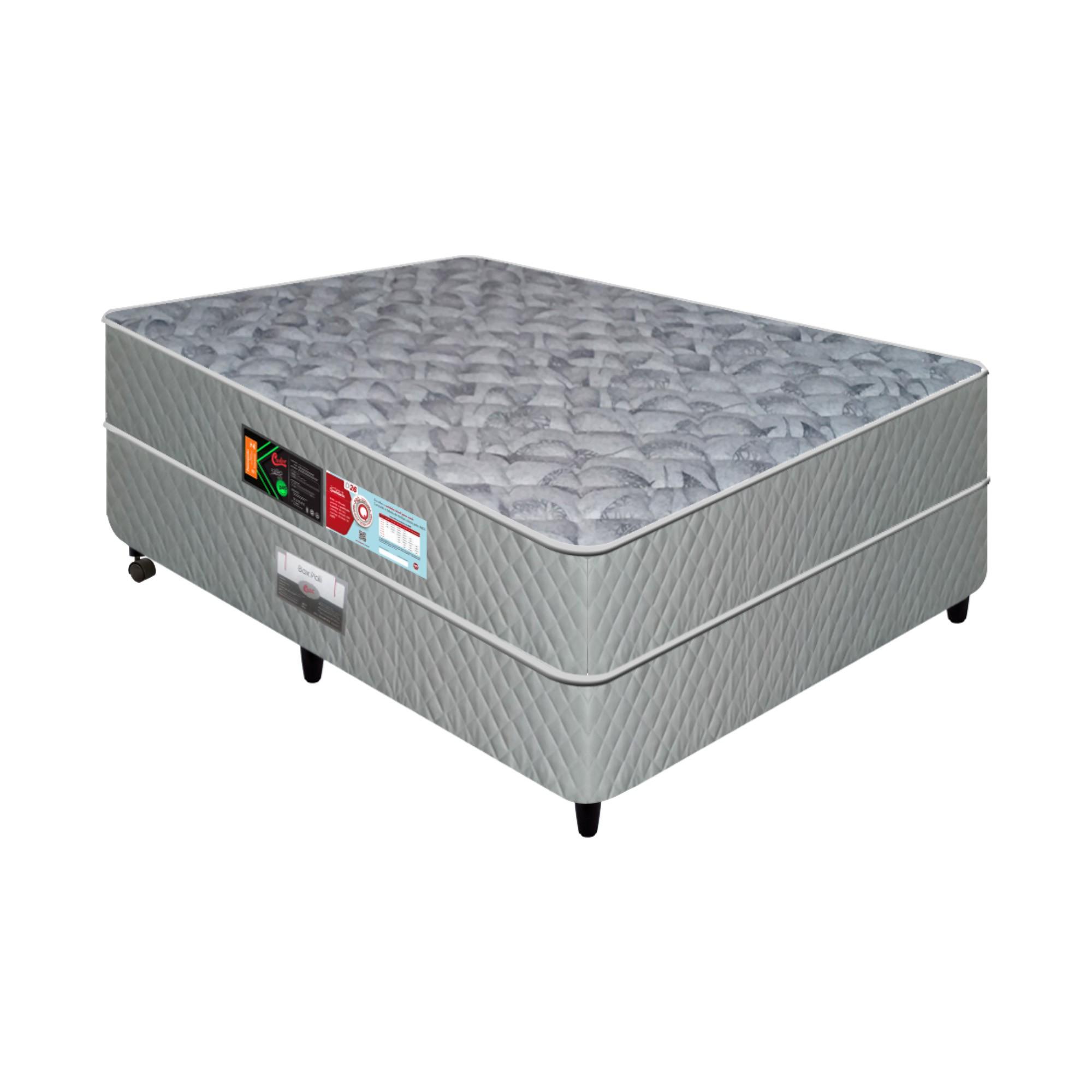 Conjunto Box Castor Sleep Max D33 [Solteirão 096 x 203 cm]