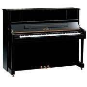 Piano Yamaha U1J PE Vertical Armário