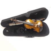 Violino Pearl River MV006