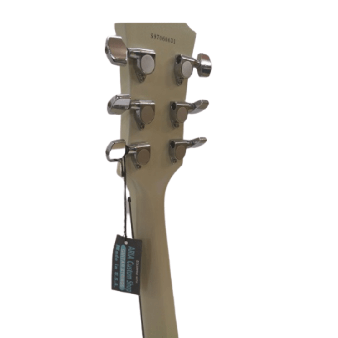 Guitarra Les Paul Vision NBCF9212