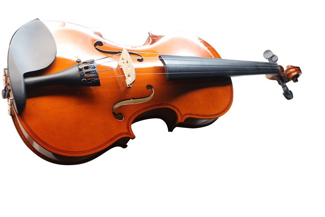 Violino Mavis 1410