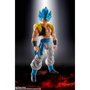 S.H.FIGUARTS DRAGON BALL SUPER GOGETA GOD