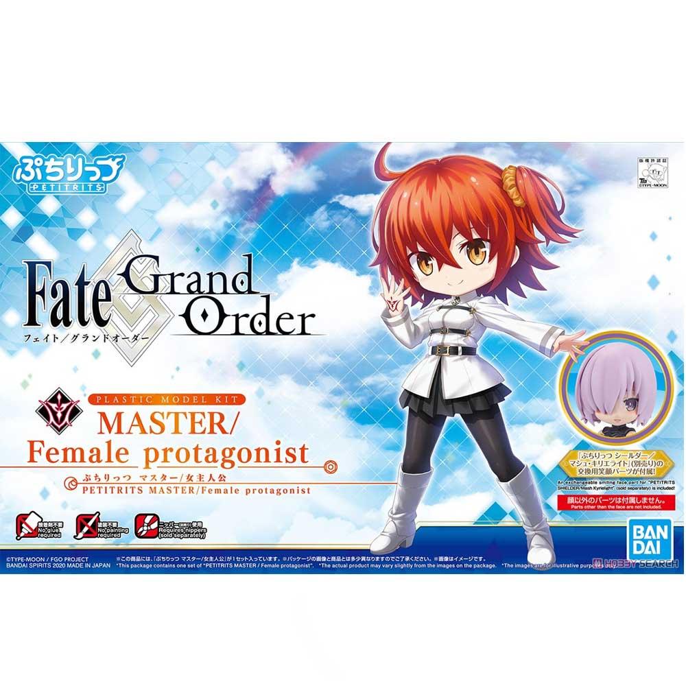 Fate Series #04 Master Female Protagonist PETITRITS Model Ki