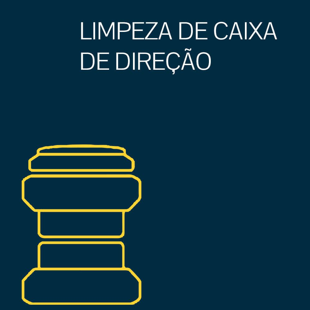 LIMPEZA DE CAIXA DE DIREÇÃO