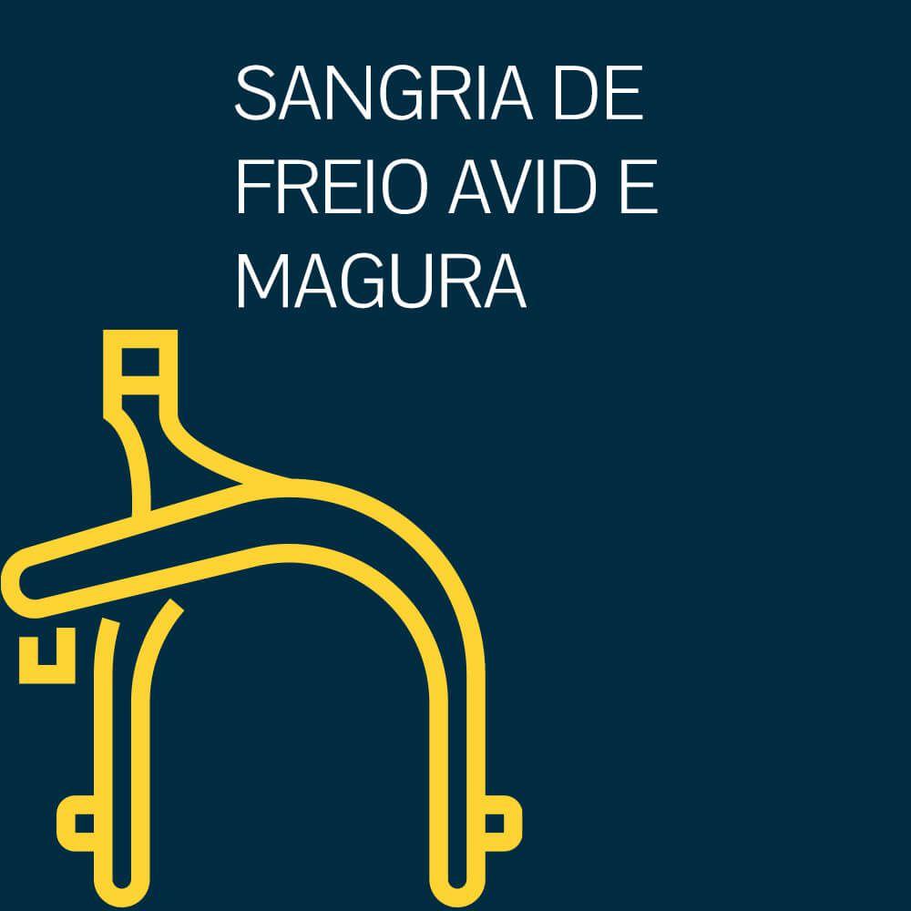 SANGRIA DE FREIO AVID E MAGURA