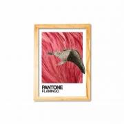 Pantone flamingo