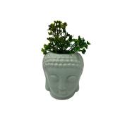 Vaso buda: verde