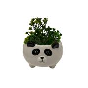 Vaso grande panda