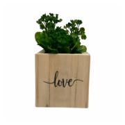 Vaso madeira quadrado: love