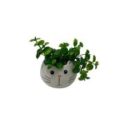 Vaso mini gato