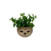 Vaso mini preguiça