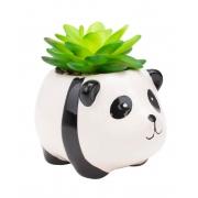 Vaso panda com planta