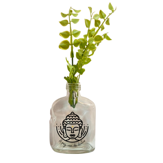 Vaso garrafa Whisk -  A paz vem de dentro