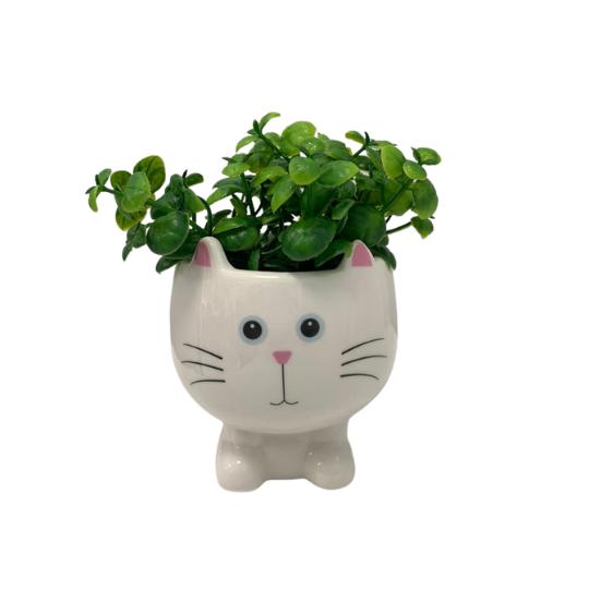 Vaso gatinho cabeça