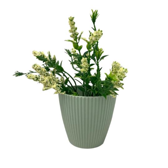 Vaso plástico linhas: verde