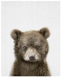 Quadro Urso Realista