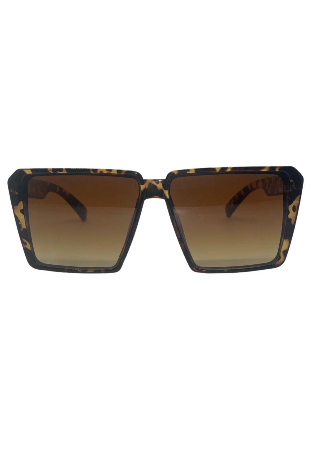 Óculos Ilha Bela Oncinha