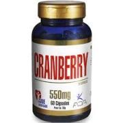 ADA Cranberry 60 Cápsulas 550mg