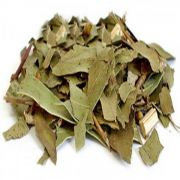 Eucalipto chá - 100g
