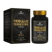 LA SAN DAY TRIBULUS TERRESTRIS 500MG 60CPS (MTC)
