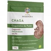 CHAGA COGUMELOS DE PODER - 100G