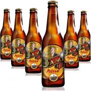 Cerveja Dama Bier Pilsen 355ml ( 6 unidades )