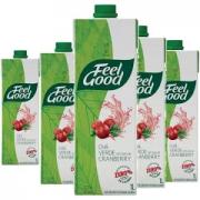 Chá Feel Good Cranberry 1L (6 unidades)