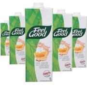 Chá Feel Good Laranja com Gengibre 1L (6 unidades)
