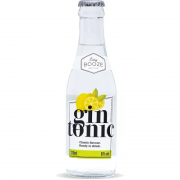 Drink Pronto Easy Booze Gin Tônica 200ml
