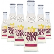Easy Booze Ginger Gin 200ml ( 6 unidades )