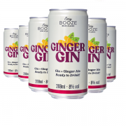 EASY BOOZE Lata Gin+Ginger 269ML (6 unidades)