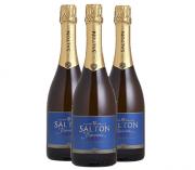 Espumante Brut Salton 750ml ( 3 garrafas )