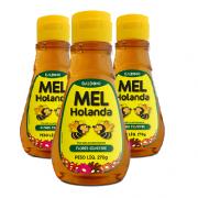 Mel de Flores Silvestres HOLANDA 270ml ( 3 unidades )
