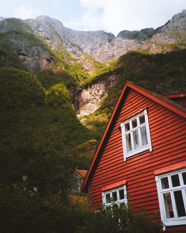 Red Wood, 2019, da série Norge