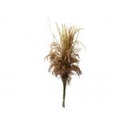 Folhagem Preservada Flecha Natural 60cm