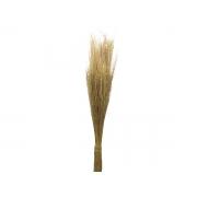 Folhagem Preservada Pulguinha Natural 60cm