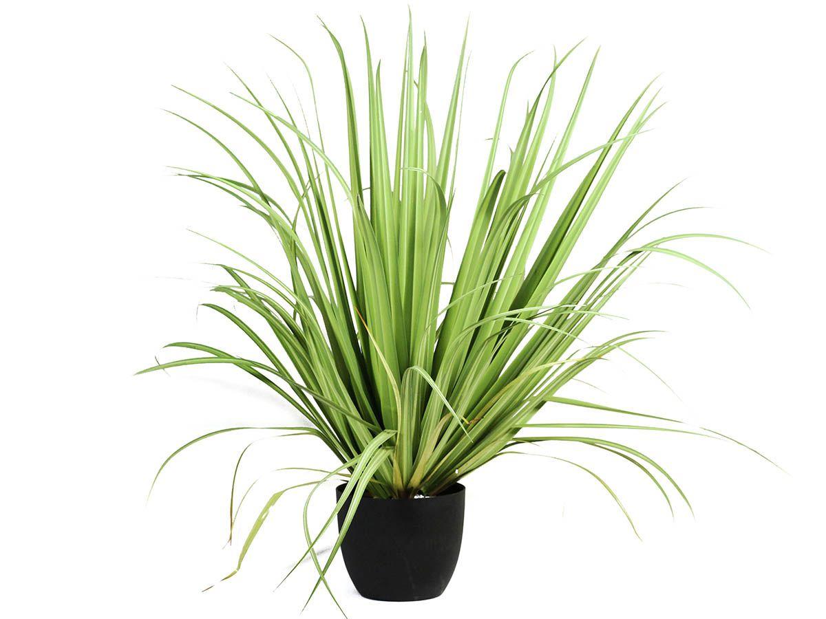 A GRASS VERDE CLARO C/ VASO 90CM 5840