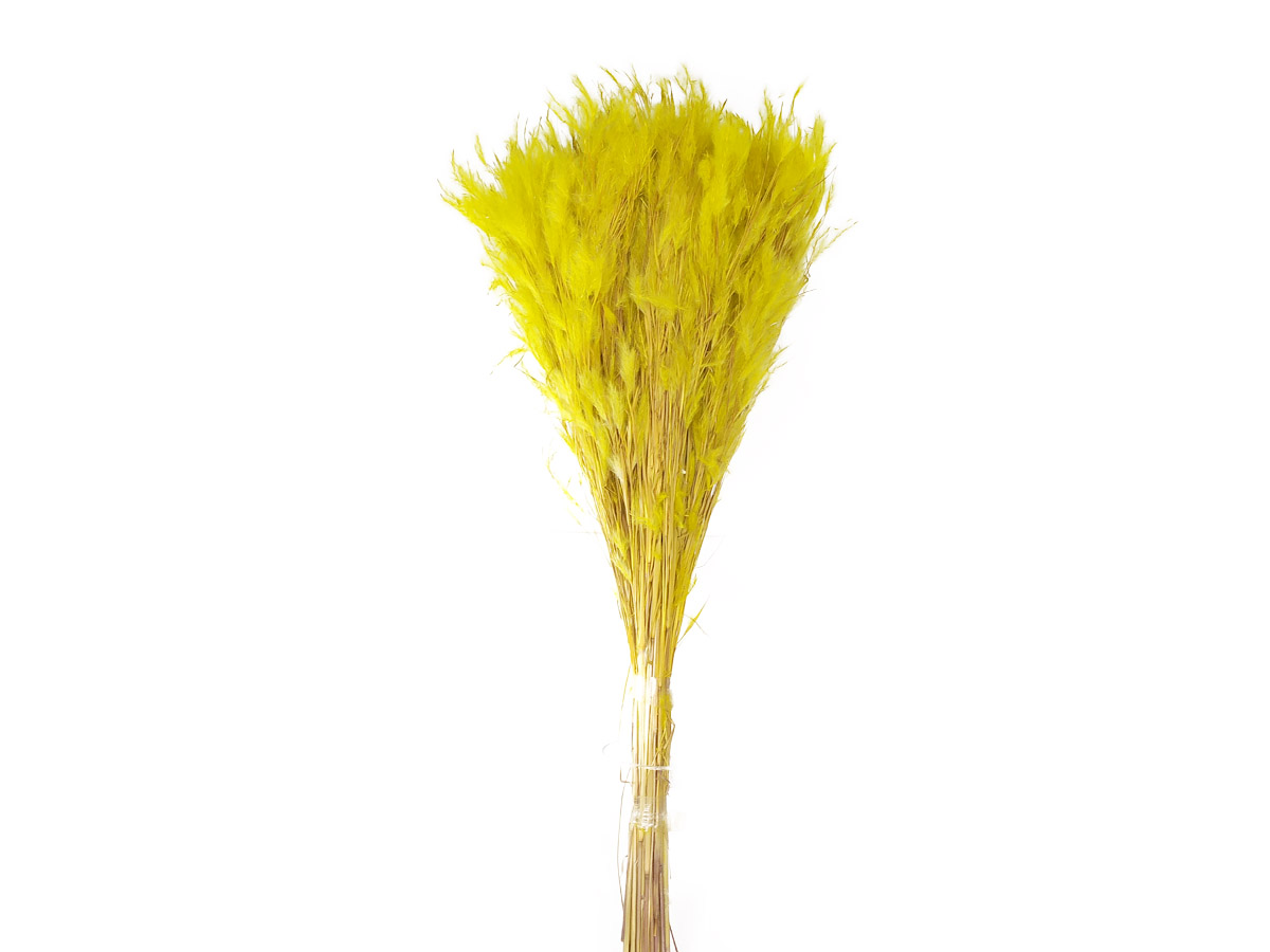 Folhagem Preservada Pluminha Amarela 60cm