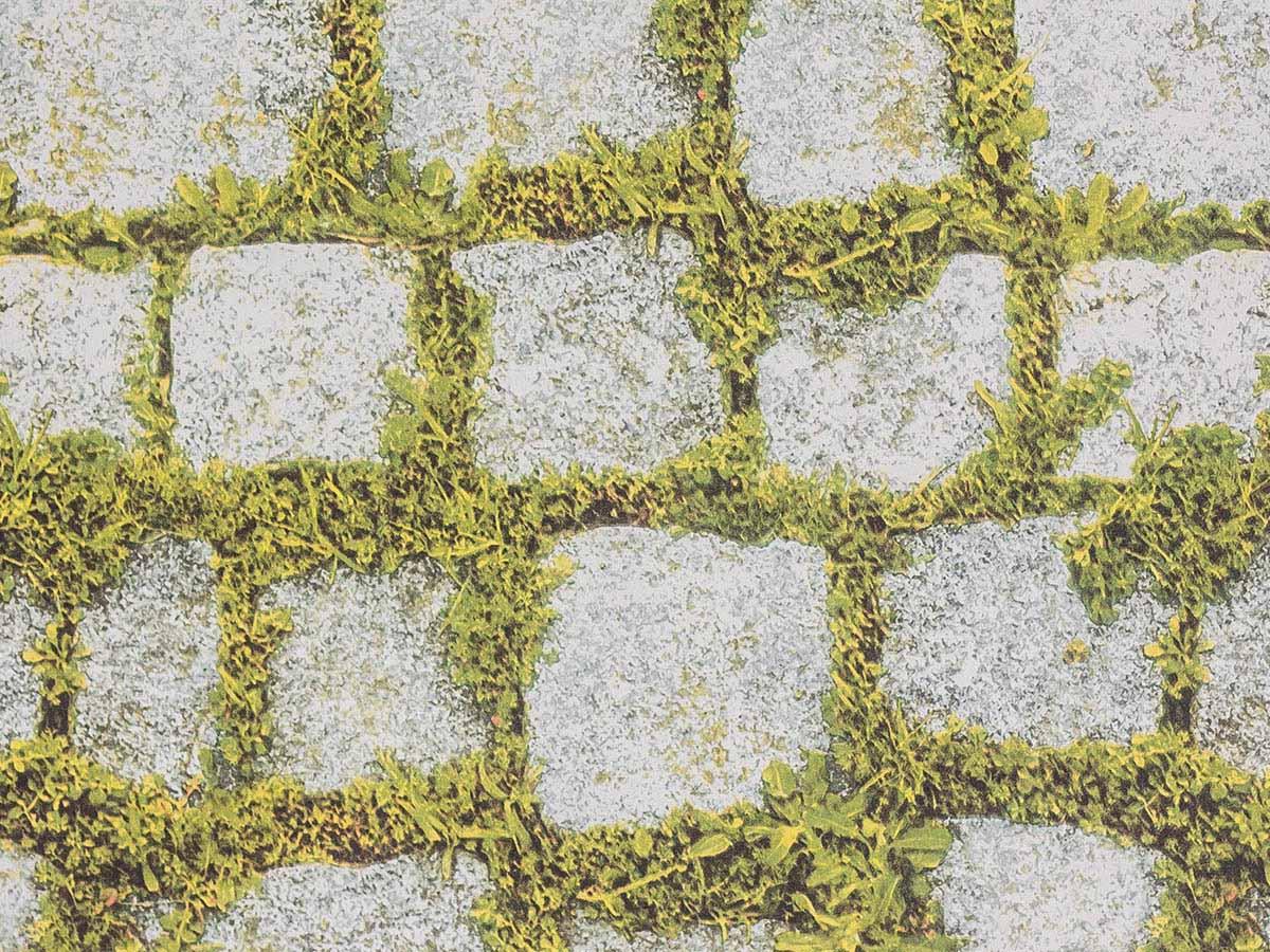 Papel De Parede Liso Pedras Com Musgo Verde - 372701