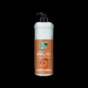 Kamaleão Color - Banho de Brilho - Capivara 1L