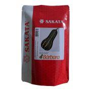 Sementes De Abóbora Bárbara - 1.000 Sementes - Sakata