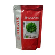Sementes De Alface Mimosa - 7.500 Sementes - Sakata