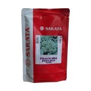 Sementes De Brócolis Piracicaba Precoce Verão - 100 gramas - Sakata