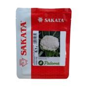 Sementes De Couve-flor Paloma - 2.000 Sementes - Sakata