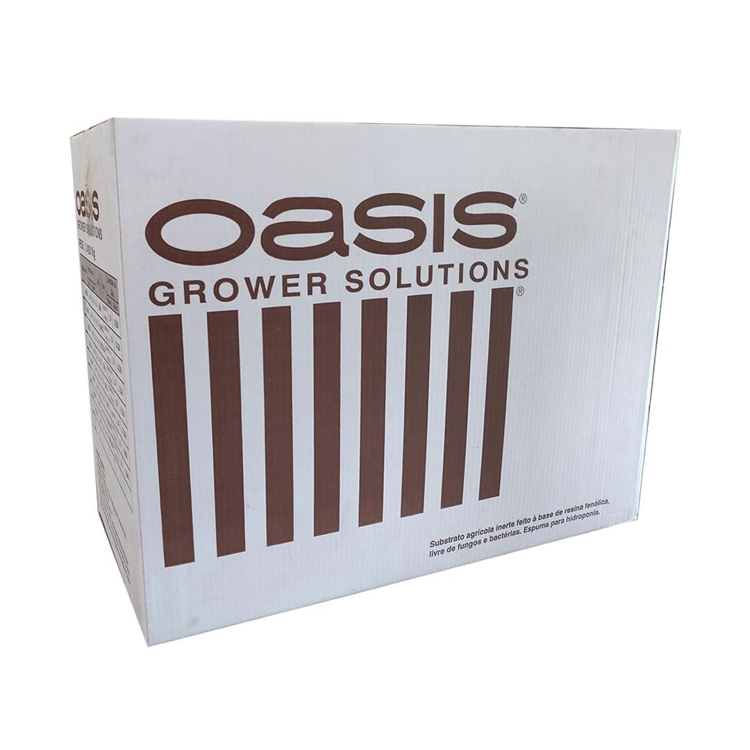Espuma Fenólica Oasis - Furo para Alface