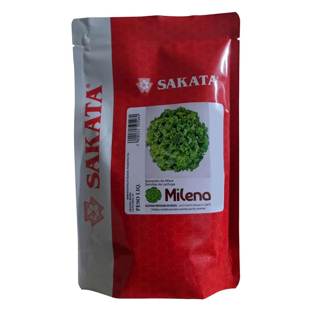 Sementes De Alface Milena - 25.000 sementes - Sakata