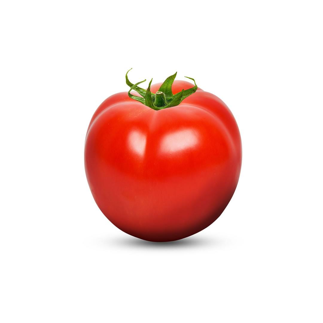 Sementes de Tomate Petros - 1.000 Sementes - Sakata