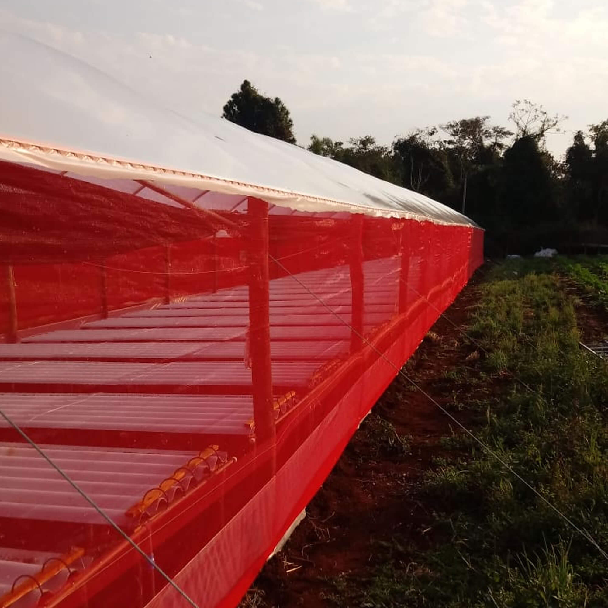 Tela de Sombreamento Vermelha 20% - 4,15 x 10 metros